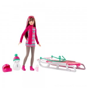Barbie Sisters' Sledding Fun and Doll Playset - Clearance Sale
