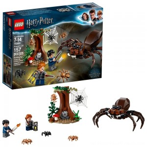 LEGO Harry Potter Aragog's Lair 75950 - Clearance Sale
