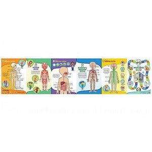 LeapReader™: Interactive Human Body Discovery Set Ages 4-8 yrs. - Clearance Sale