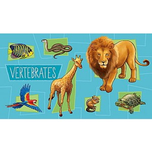 LeapStart® Amazing Animals with Conservation 30+ Page Activity Book Ages 4-6 yrs. - Clearance Sale
